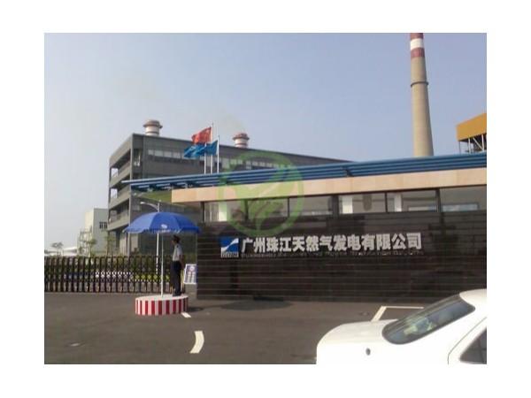 广州珠江天然气发电有限公司检测案例