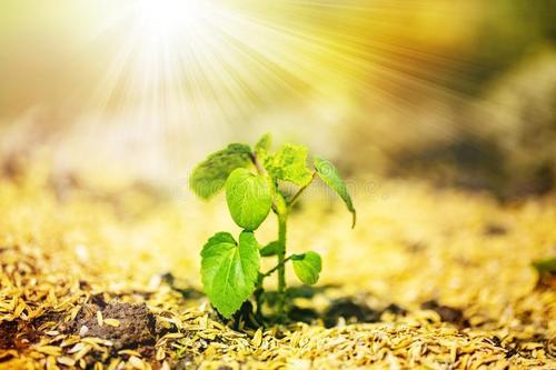建研环境监测-土壤
