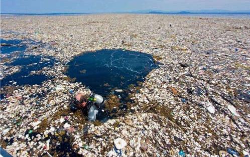 废弃污染物检测