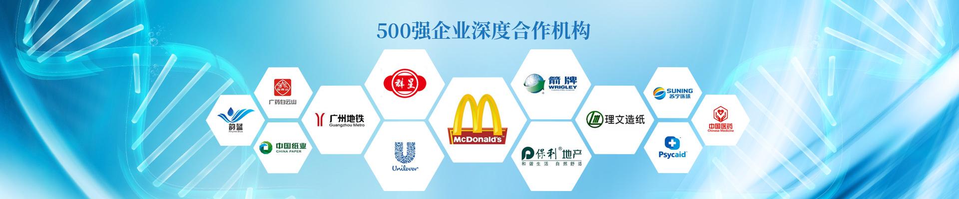 广东建研-500强企业深度合作机构