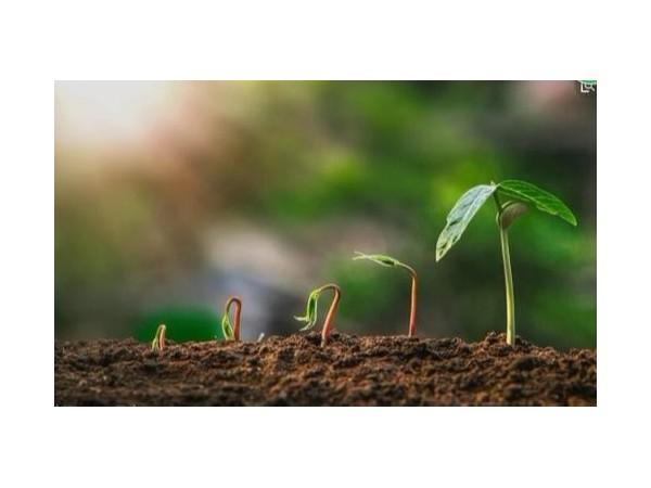 建研环境监测-土壤检测