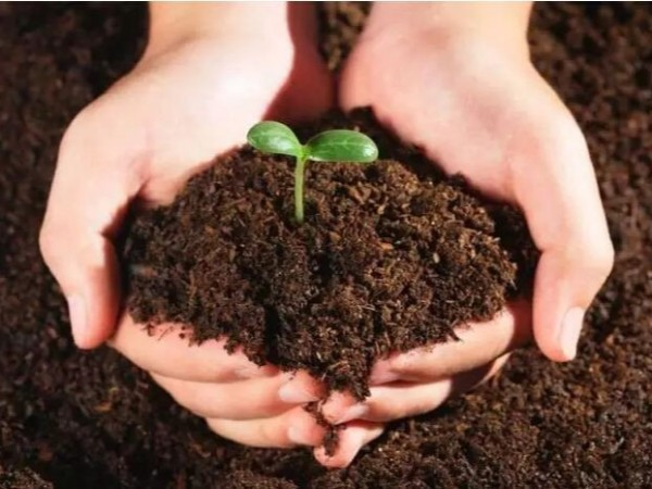 国内农村耕地的土壤污染有多严重,一组数据带你了解