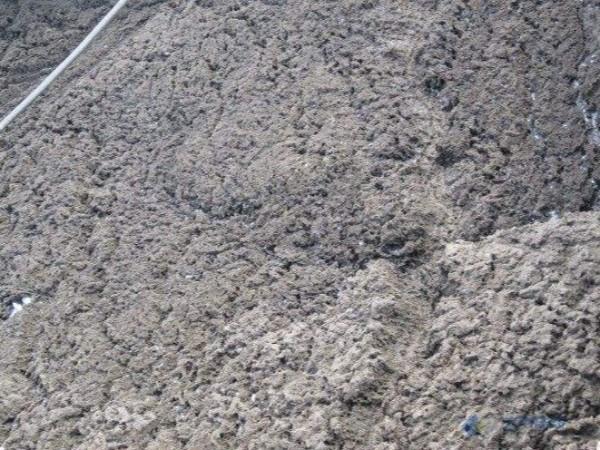 广东污泥的处理方式有哪些